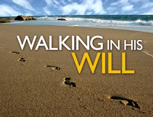 What Am I To Follow – My Will or God's Will?